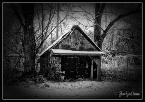 A Mid-Winter Night's Dream